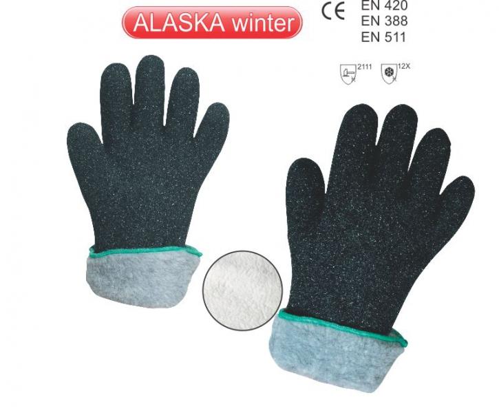 alaska-winter